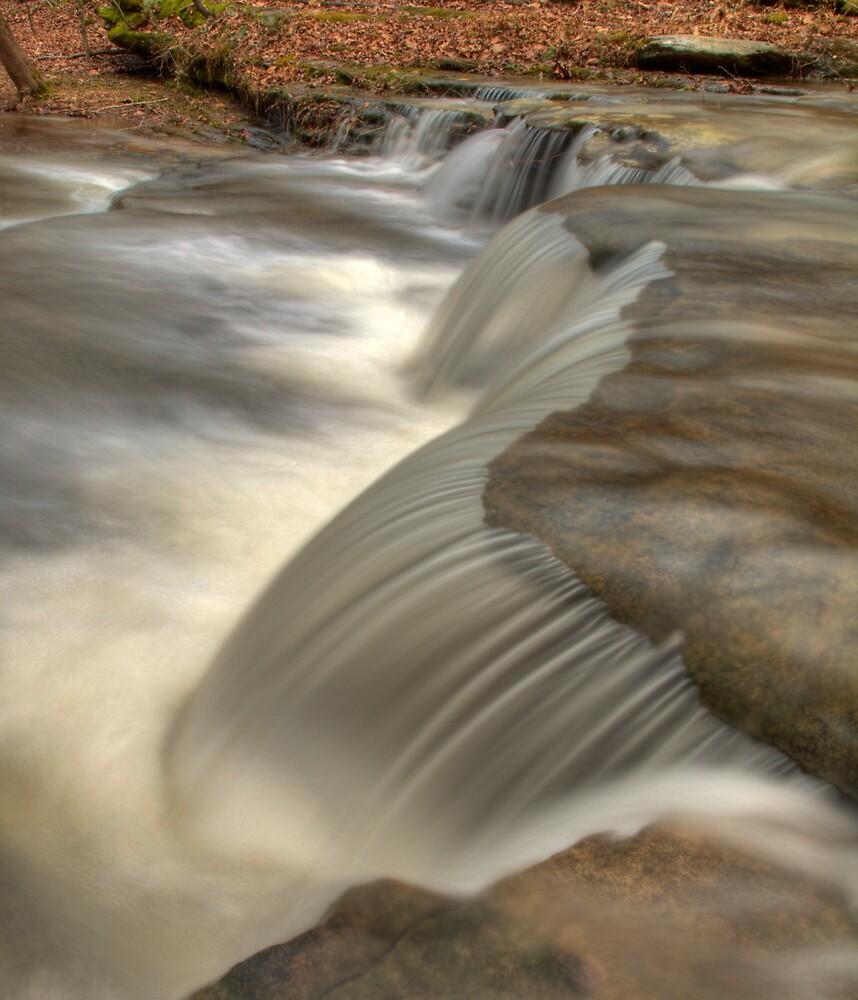 Falls on Bear Branch by David Allen