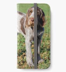 Brown Roan Italian Spinone Puppy Portrait iPhone Wallet/Case/Skin