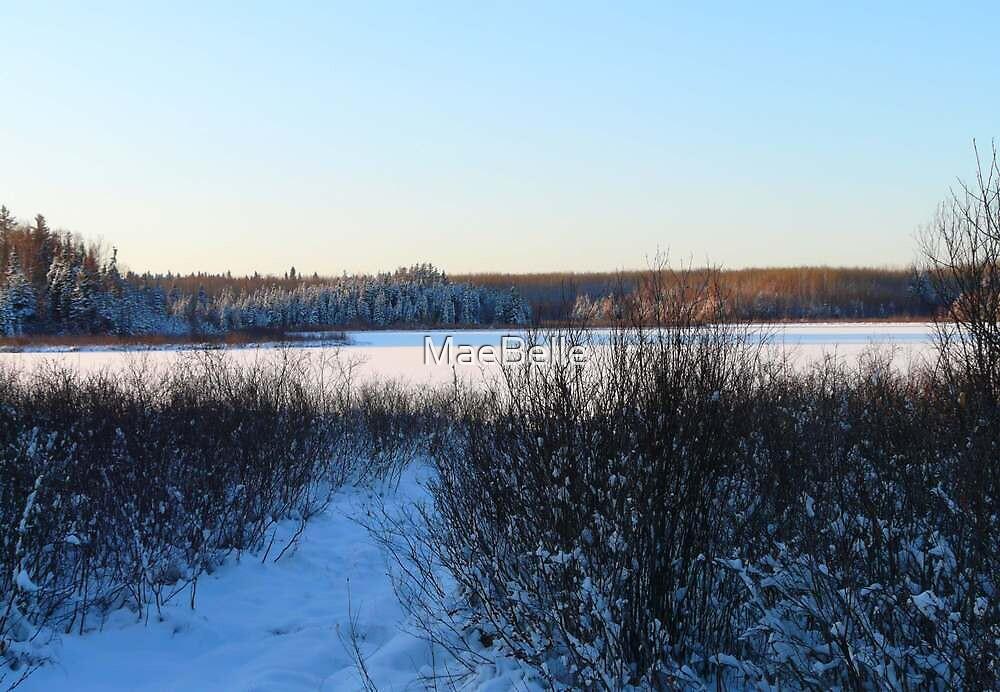 Evening Across Horseshoe Lake,Sask.Canada. by MaeBelle