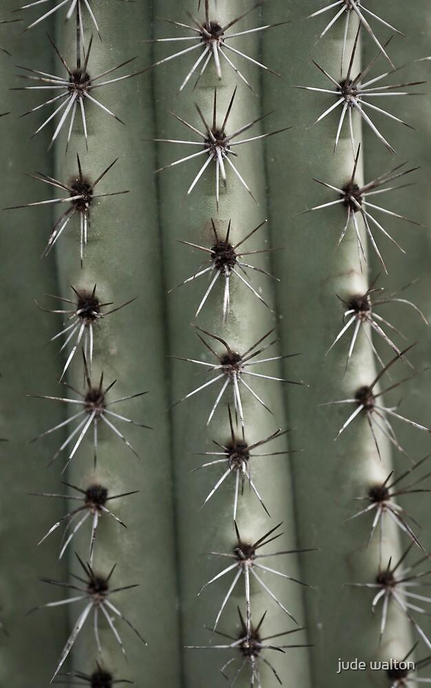 spike stripes by jude walton