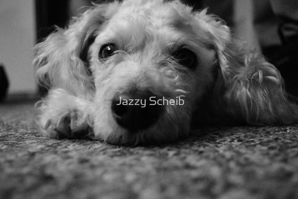 Puppy (: by Jazzy Scheib