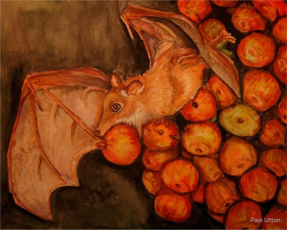 fruit bat by Pam Utton