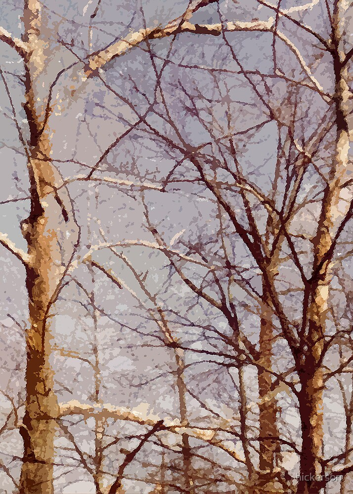 Tangled Branches by hickerson