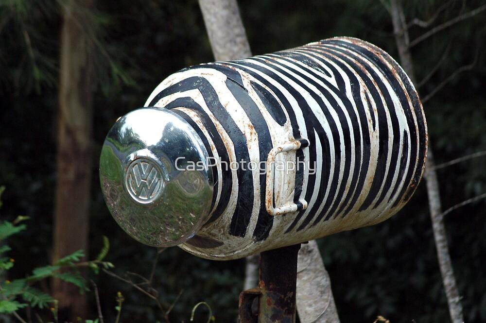 Zebra Mail - NSW by CasPhotography