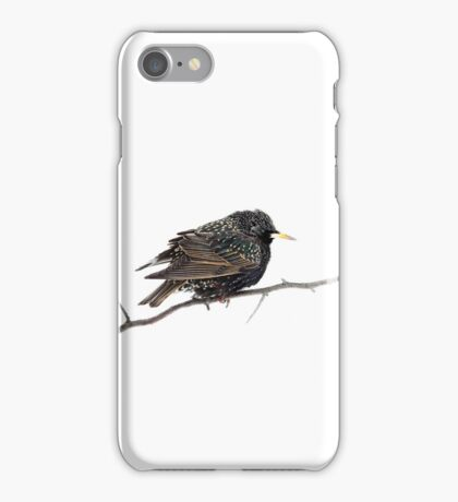 Hello Starling iPhone Case/Skin