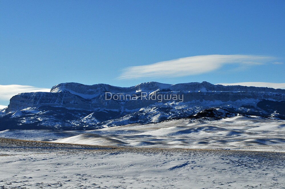 West of Dupuyer, Montana, Christmas Day by Donna Ridgway