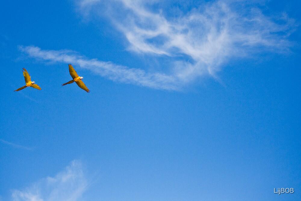 Free as a Bird by Lij808