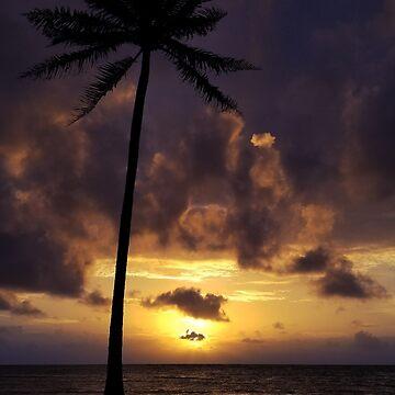 Oahu Sunrise Hale Kualoa by KandisGphotos