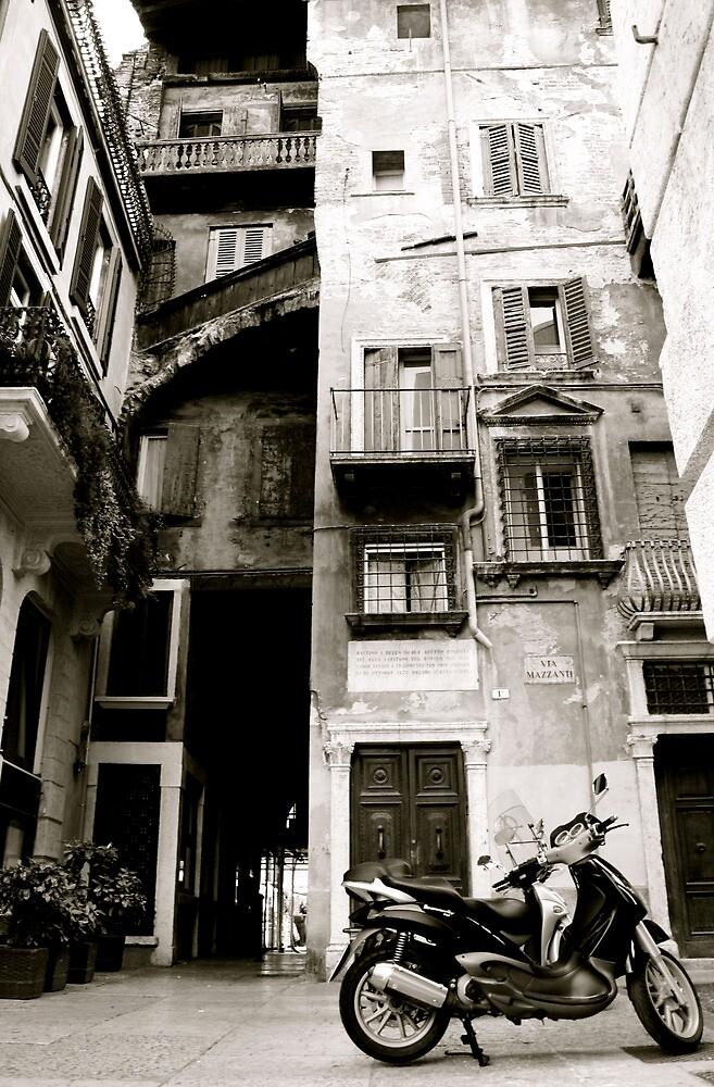 Verona, the old & the new by Natasha D