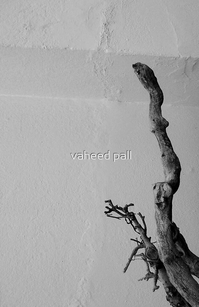 drift by vaheed pall