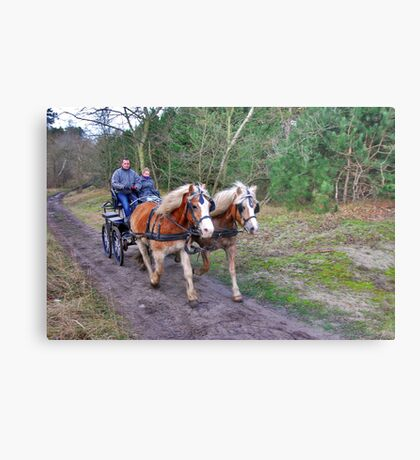 A forest ride Metal Print