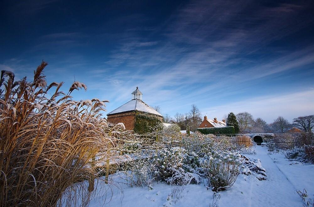 The Winter Garden by Andrew Leighton