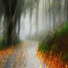Artscape........Misty, colourful Mountain........ by Imi Koetz