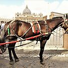 The Vatican Horse by Fara