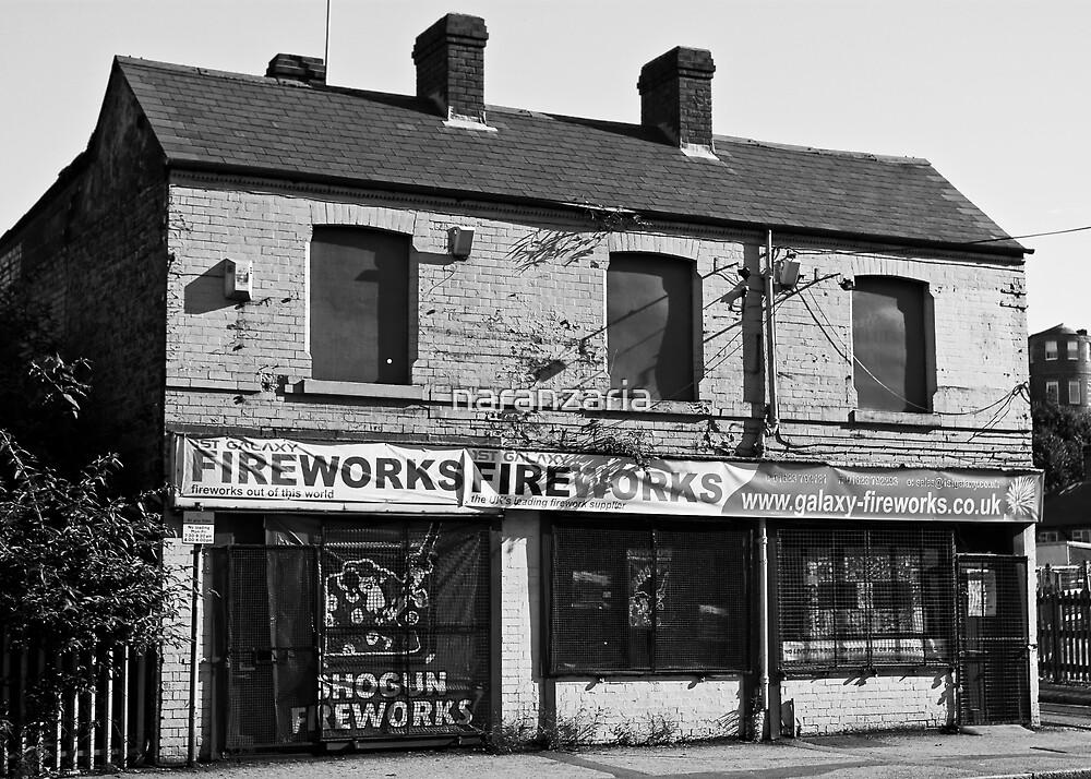 Fireworks store. by naranzaria