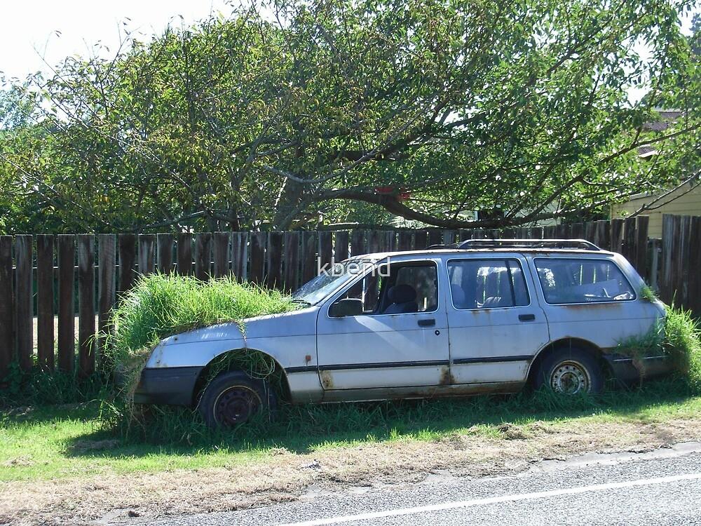 'Grass' Car by kbend