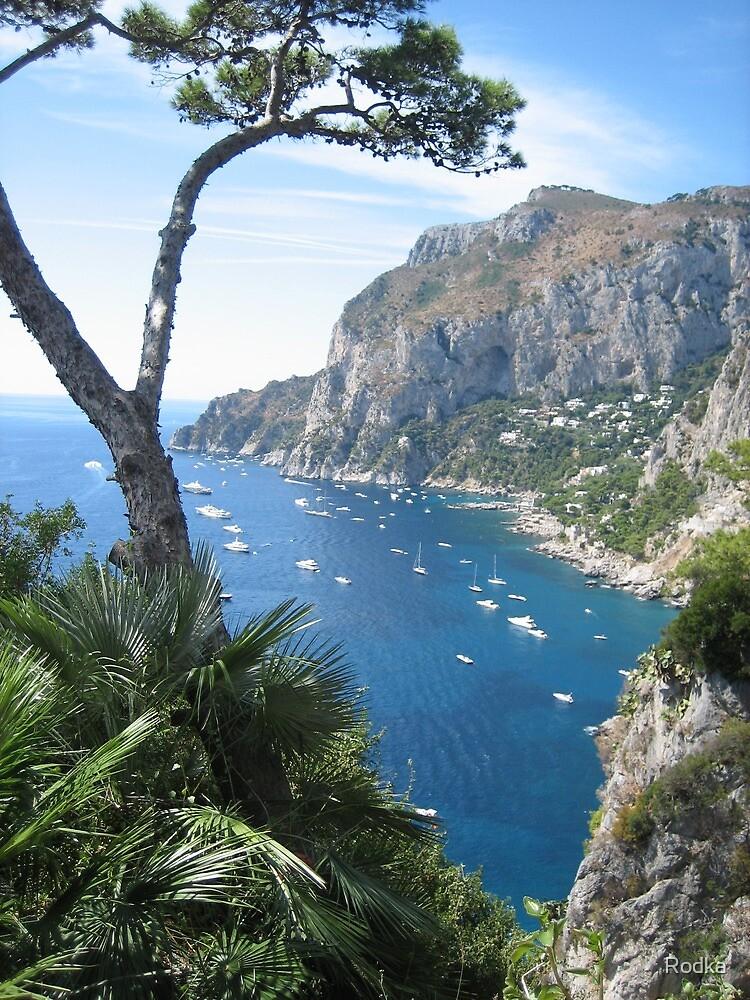 Capri in Italy by Rodka
