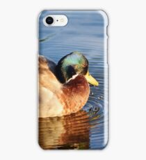 Mallard Drake at Sunset iPhone Case/Skin