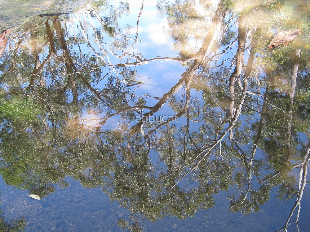 Reflections of Englebrook by abbycat