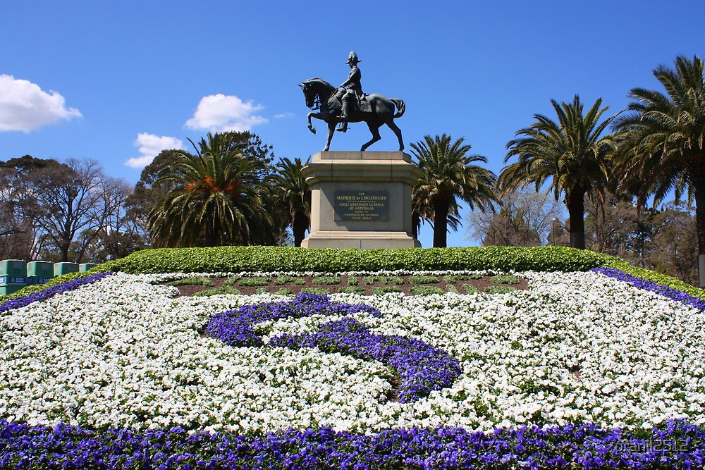 Blue Sky Horse Ride at Melbourne by pranil2512