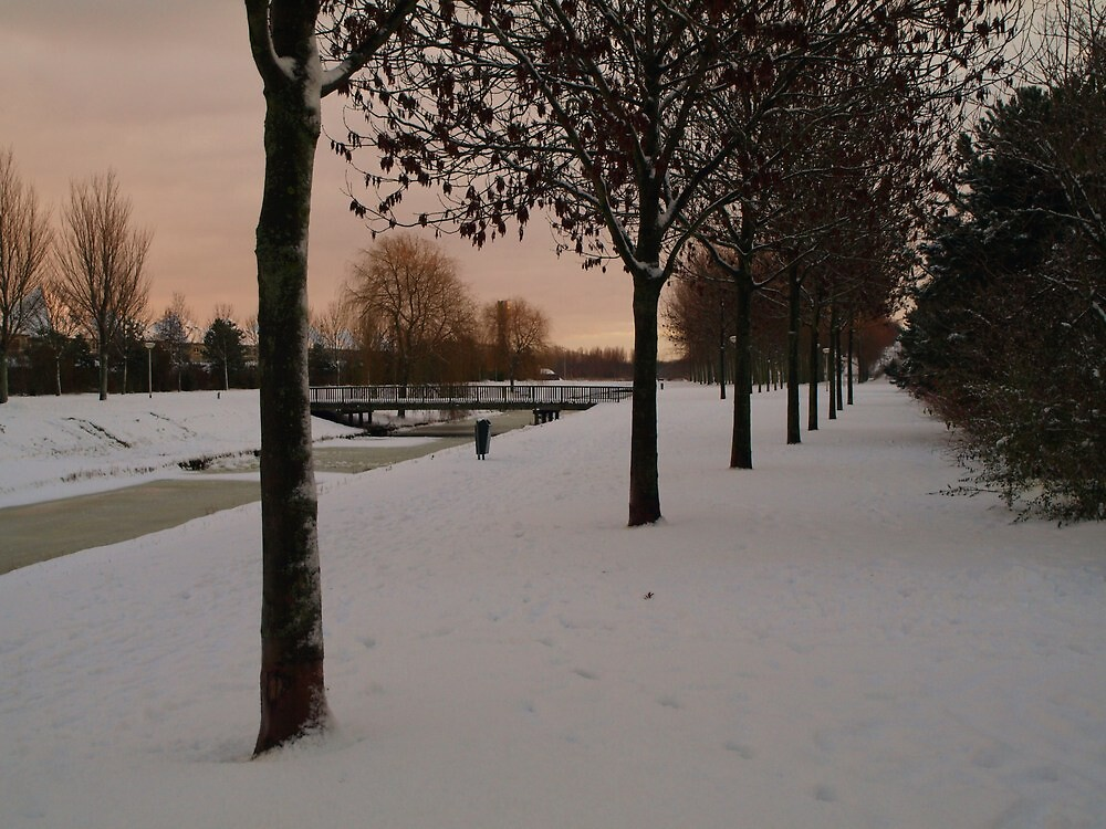 White Christmas by Janone