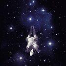 Among the Stars by buko