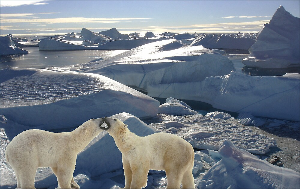 1485-XL-Polar Attraction by George W Banks