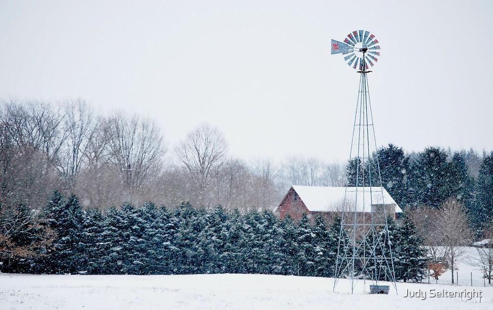 Snowy Day by Judy Seltenright