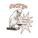 George Goffin Cockatoo Awaye dans ta Cage! by Perroquets  En Folie