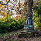 Buddha Statue by Alan Organ LRPS