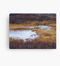 Oyster Pond Canvas Print