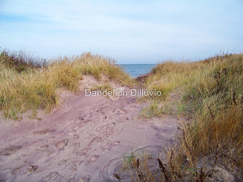 Trail to the Sea by Dandelion Dilluvio