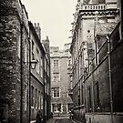 Trinity Lane by Sue Frank