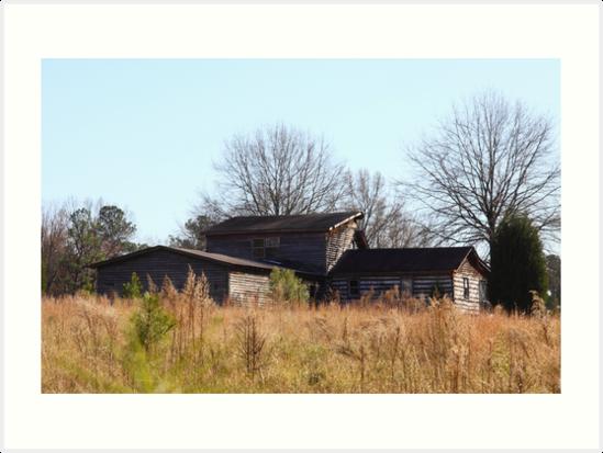House In Field North Carolina  by Jonathan  Green