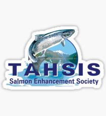 TSES logo Sticker