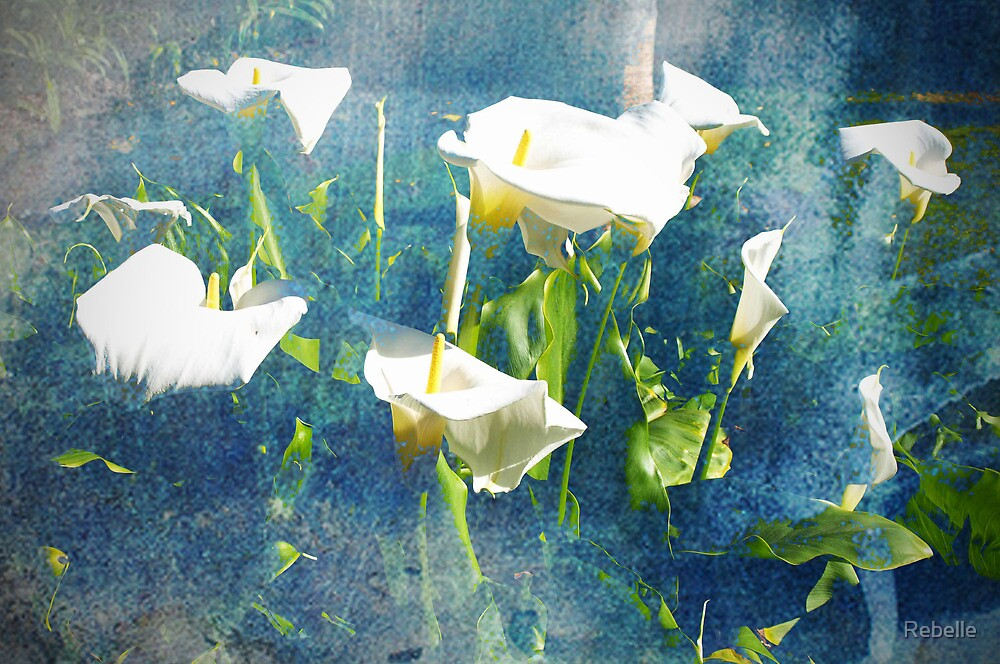 Calla Lily Blues by Rebelle