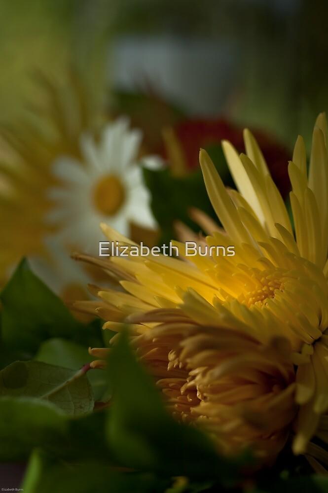 Light and Seek for the Bride by Elizabeth Burns