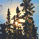 Sun-Boy Rising by MaeBelle