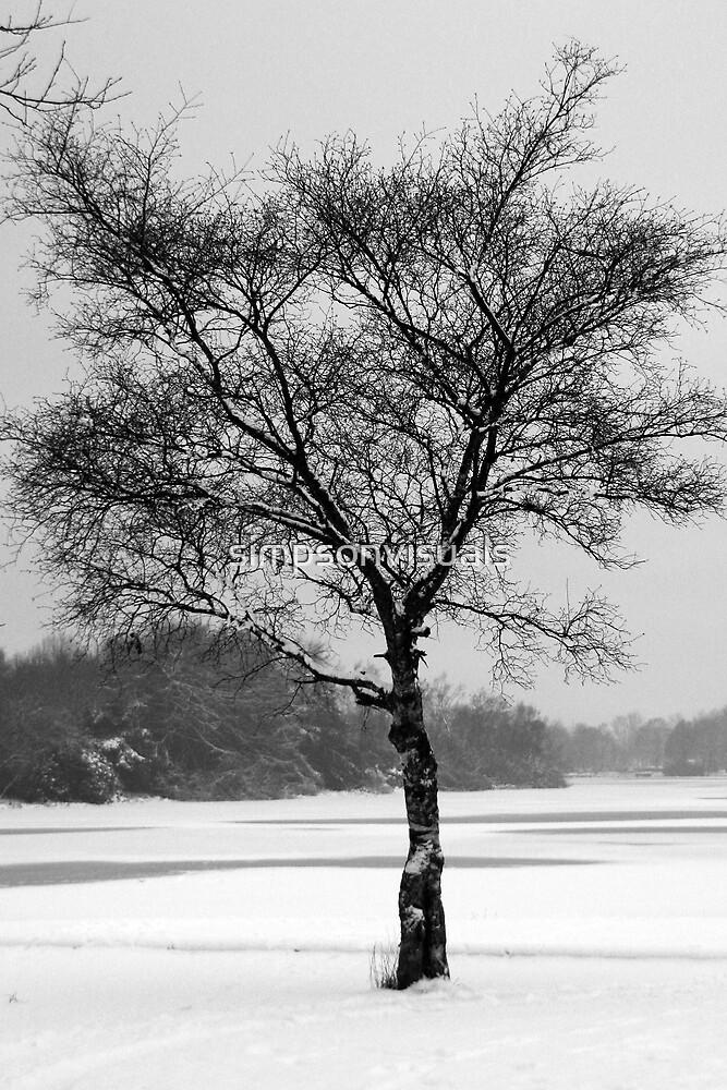 Lone Tree in Winter Landscape, Scotland, UK by simpsonvisuals