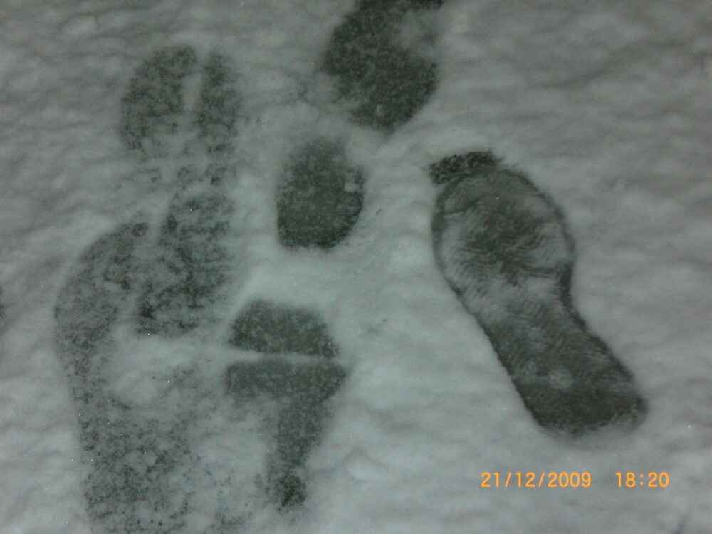 Footprints in the snow by Jadavision