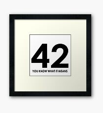The meaning of life, the universe and everything Framed Print