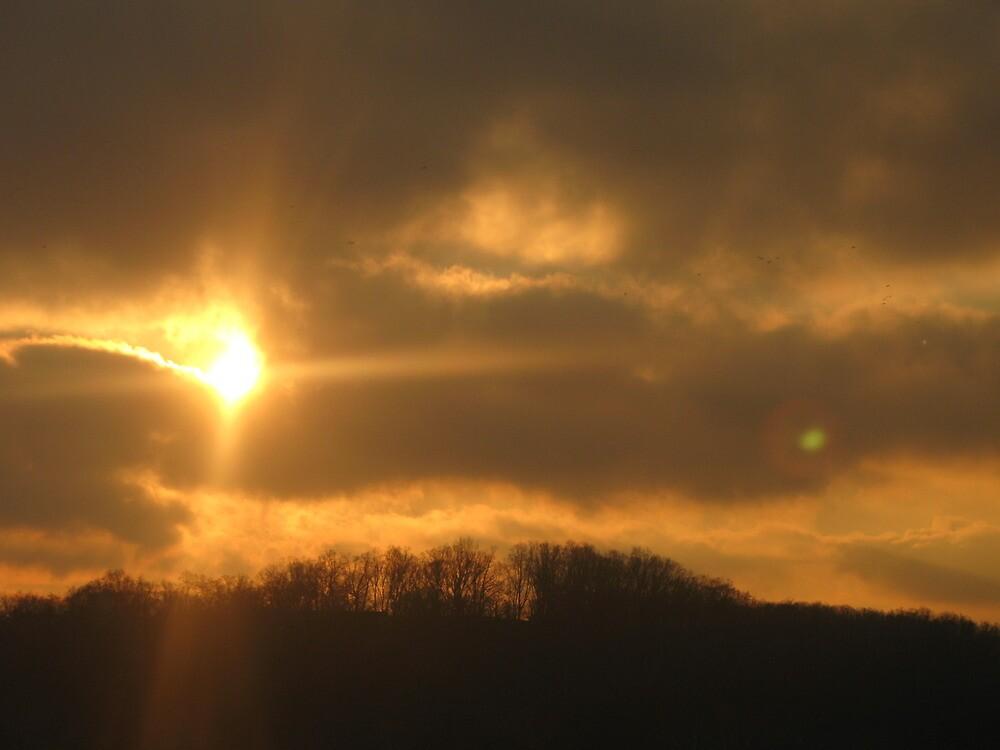 D.C. Sunset by Nathaniel Barrett