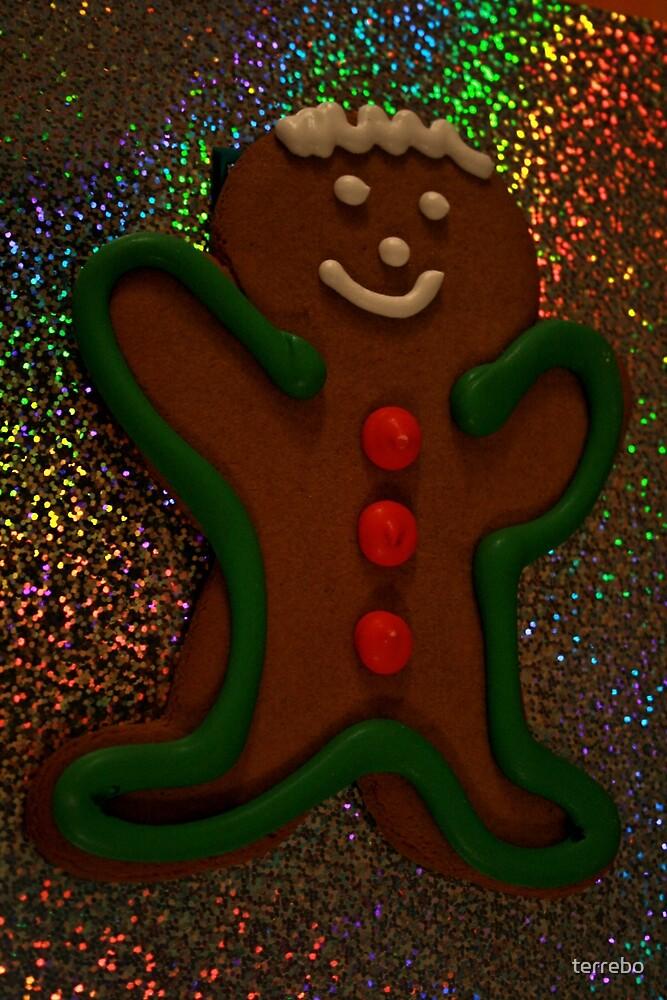 Gingerbread Man by terrebo