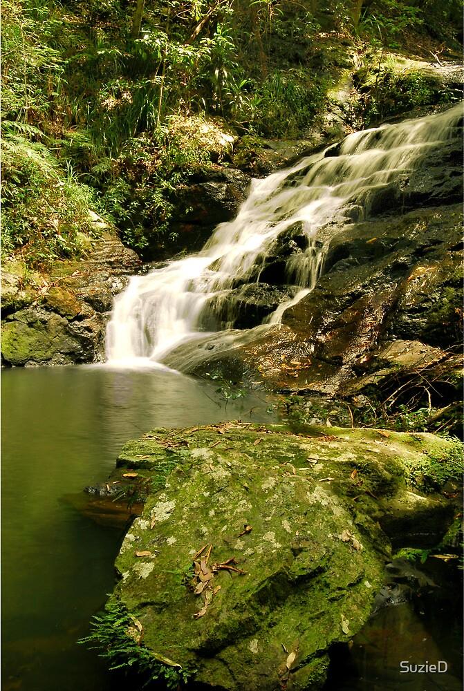 Malaney Waterfall by SuzieD