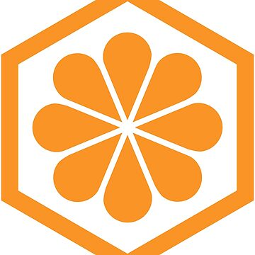 Geometric Pattern: Hexagon Flower: Orange/White by redwolfoz