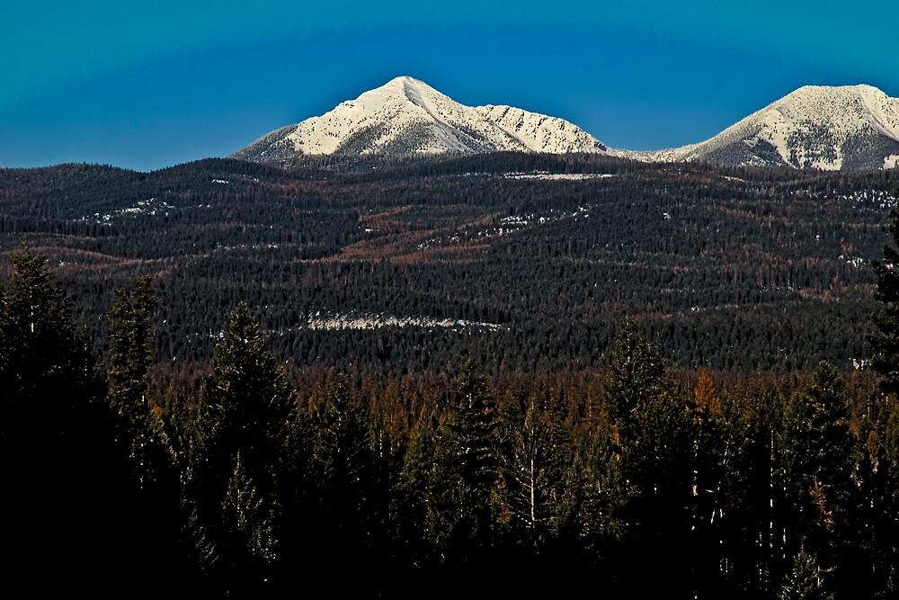Bob Marshall Wilderness in HDR 2 by Bryan D. Spellman