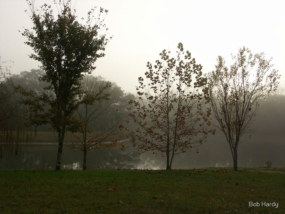 Misty Morning by Bob Hardy