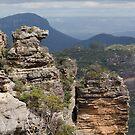 Boars Head Rock by Vickie Burt