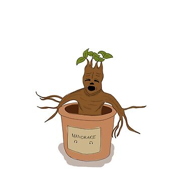 Mandrake Root by alicedaisymae3