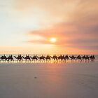 Cable Beach Camels by Toddy4x4